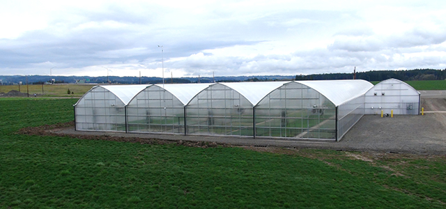 greenhouse tunnels North West